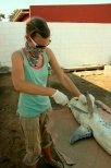 Michelle Jewell dissecting a spotted gully shark